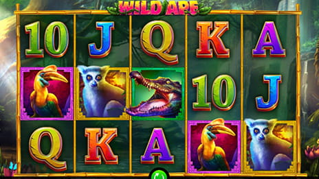 La slot Wild Ape sul casinò Bitcoin Mr Green.